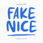 Fake Nice1