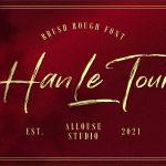 Han Le Tours1