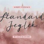 Standard Jeglek1