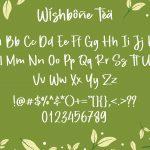 Wishbone Tea3