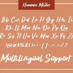 Hummer Miller10